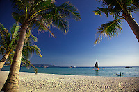 Palm trees on White Sand Beach, Boracay, Philippines.