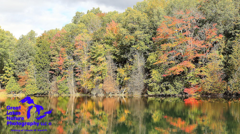This pond north of Mesick Michigan is actually an extension of the Manistee River, and explodes with color in autumn.