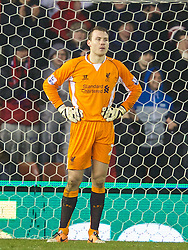 STOKE-ON-TRENT, ENGLAND - Sunday, January 12, 2014: Liverpool's goalkeeper Simon Mignolet looks dejected as Stoke City score the third goal during the Premiership match at the Britannia Stadium. (Pic by David Rawcliffe/Propaganda)