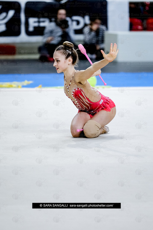 PADUA, ITALY - NOVEMBER 12 2016: Chiara Vignolini of Raffaello Motto performs with clubs at the italian national rhythmic gymnastic championship. Her score in the apparatus is 15,850. Her team's score is 96,650 and ended up in fourth position.<br /> #SerieAdiritmica<br /> #ginnasticaritmica #rhythmicgymnastic #gymnast #sport #sportphotography