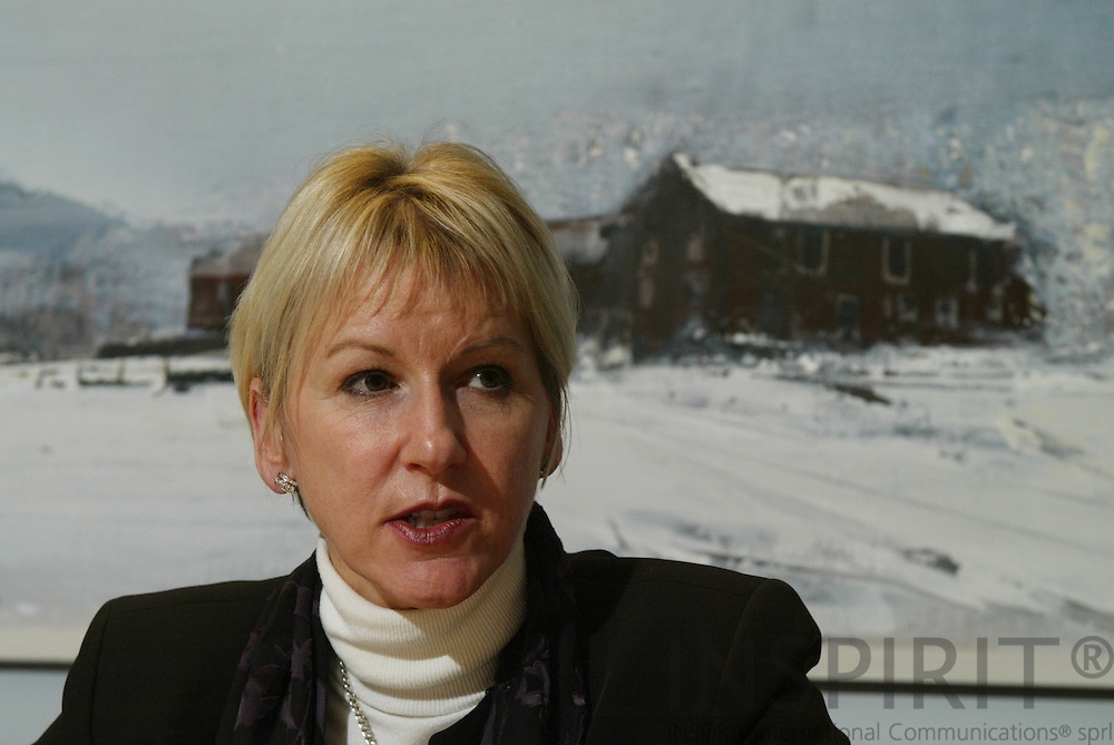 BRUSSELS - BELGIUM - 9 DECEMBER 2004 --Margot Wallström, Vicepresident and EU-Commissioner for Institutional Relations and Communication Strategy.-- PHOTO: ERIK LUNTANG / INSPIRIT