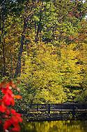 Paris Mountain State Park - Greenville, SC