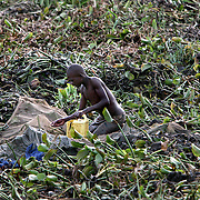 A boy searches for mud fish at the edge of Lake Victoria. Mud fish, used for bait, have appeared in Lake Victoria for the first time because of the water hyacinth infestation.  Pollution of the lake is causing water hyacinth to grow out of control and is a sign of the environmental problems affecting the lake.