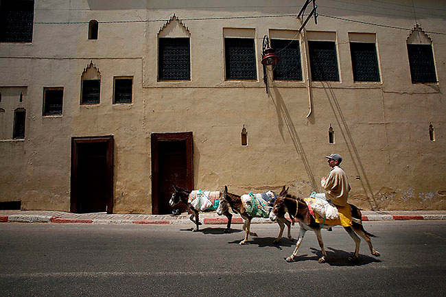 A man and his three donkeys pass by the Batha Museum in Fes, Morocco on Sunday afternoon, June 10, 2007. The streets of Fes are filled mules, horses and other traditional modes of transport and life. (PHOTO BY TIMOTHY D. BURDICK)