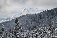 Shawatum Mountain in winter seen from Gibson Pass Ski Area. Manning provincial Park, British Columbia