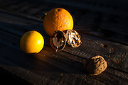Walnuts and oranges glow in the evening light of mid-january in California's centra valley.  January 11, 2009.//Photo by Nathan Weyland