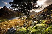 Tryfan and Llyn Ogwen in late afternoon light. Far more straight forward than many of my other images but in it's own way has a particular quality of light, and richness of terrain, which I nevertheless quite enjoy. I may remove this image anyway soon !