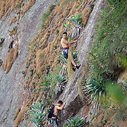 Rock Climbers on Sugar Loaf Mountain. Rio de Janeiro,  Brazil. 26th August 2010. Photo Tim Clayton.