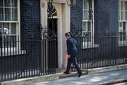 © Licensed to London News Pictures. 24/06/2016. London, UK. British prime minister DAVID CAMERON and his wife SAMANTHA CAMERON return to 10 Downing Street in London after DAVID CAMERON delivered a resignation speech on the day that the UK voted to leave the EU in a referendum. Photo credit: Ben Cawthra/LNP