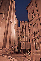 Atmospheric shot of the Papal Palace at night in Avignon, France.