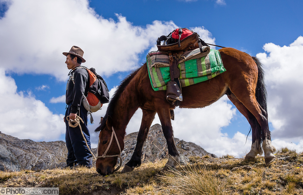 Our cook Juan supports our trek with a saddled horse, in the Cordillera Blanca, Andes Mountains, Peru, South America. Day 6 of 10 days trekking around Alpamayo in Huascaran National Park.