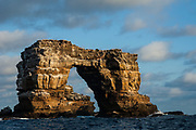 Darwin Arch<br /> Off of Darwin Island<br /> GALAPAGOS ISLANDS<br /> ECUADOR.  South America