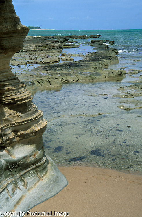 Stratified sandstone cliffs and rocks emerging from the sea at low tide at Praia do Morro, Barra do Camaragibe, Alagoas, Brazil