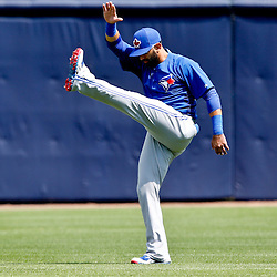 Feb 28, 2013; Tampa, FL, USA;  Toronto Blue Jays right fielder Jose Bautista (19) stretches before a spring training game against the New York Yankees at George Steinbrenner Field. Mandatory Credit: Derick E. Hingle-USA TODAY Sports