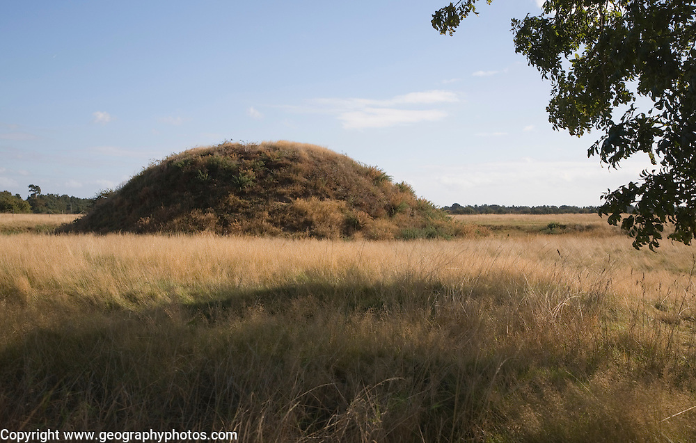 Burial mound at the Anglo Saxon archaeological site of Sutton Hoo, Suffolk, England