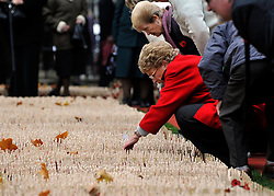 © Licensed to London News Pictures. 10/11/2011. London, UK. A woman looks through the crosses. HRH The duke of Edinburgh opens the annual Field of Remembrance at Westminster Abbey today 10 November. . Photo credit : Stephen Simpson/LNP
