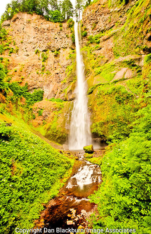 Bridalveil Falls Oregon in Full Flow