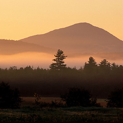 Weld, ME. Mist and trees at dawn with Mt. Blue in the distance. Northern Forest.