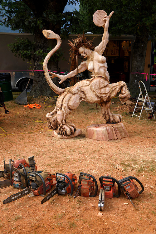 Canada, British Columbia,Hope, chainsaw festival