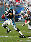 CHARLOTTE, NC - NOVEMBER 7:  Quarterback Jake Delhomme #17 of the Carolina Panthers runs away from a sack by safety Jarrod Cooper #40 and defensive tackle Tommy Kelly #93 of the Oakland Raiders at Bank of America Stadium on November 7, 2004 in Charlotte, North Carolina. The Raiders defeated the Panthers 27-24. ©Paul Anthony Spinelli  *** Local Caption *** Jake Delhomme;Jarrod Cooper;Tommy Kelly