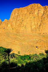 Todra oasis in the early morning, Todra Gorge, Morocco<br /> <br /> (c) Andrew Wilson | Edinburgh Elite media