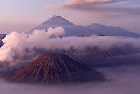 Indonesie. Île de Java. Volcans Bromo (Mont Bromo - 2392m) et Semeru (3676m) tôt le matin. // Indonesia. Java island. Bromo (2392m) and Semeru (3676m) volcanoes, early morning.