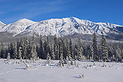 The MItchell Range (Canadian Rocky Mountains), Kootenay National Park, British Columbia, Canada