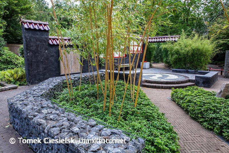 Contemporary japanese, garden