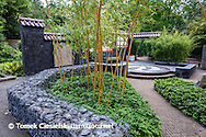 Contemporary japanese, garden