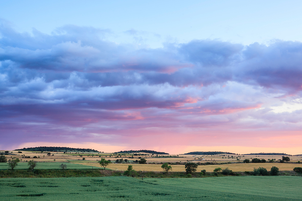 Farmland landscape at sunset. Lleida province. Catalonia. Spain.