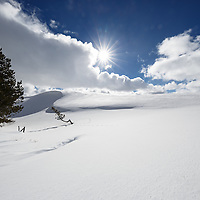 Christmas/Winter Scenes
