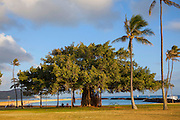 Sunset, Magic Island, Ala Moana Beach Park, Waikiki, Honolulu, Oahu, Hawaii