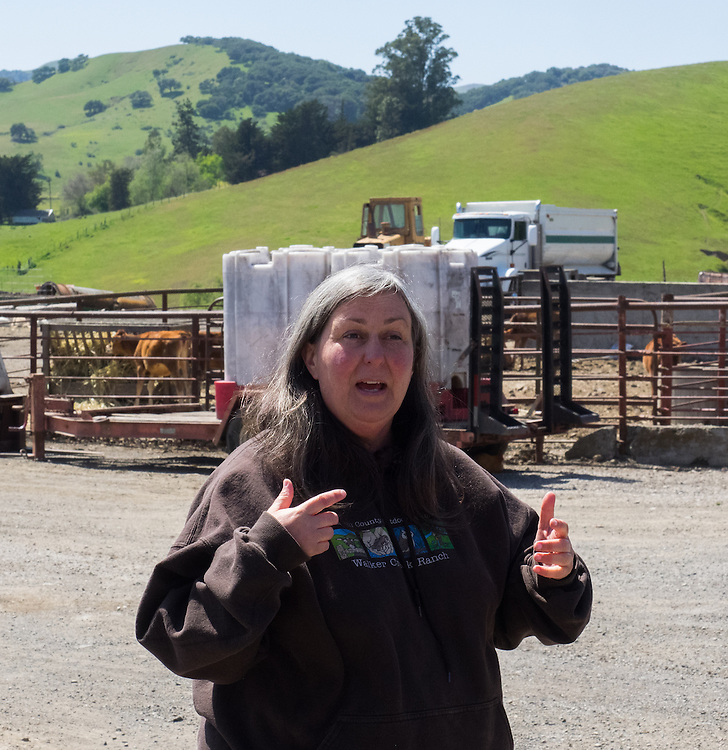 Donna Pacheco at Pacheco Ranch & Achandinha Cheese Company