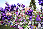 Minneapolis, Minnesota, USA. 23rd April, 2016. Fans flock to Paisley Park where a private funeral ceremony for Prince was held today, to pay their respects and leave gifts of purple flowers, art, and balloons. © Gina Kelly / Alamy Live News