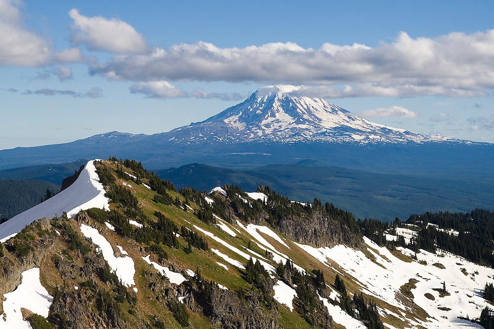 View of Mount Adams from Hawkeye Point, Goat Rocks Wilderness, Washington.