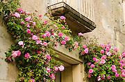 Doorway and roses, Villandry, France