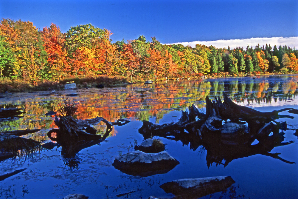 Promised Land State Park, autumn foliage, lake, reflections, Pike County, Pennsylvaania