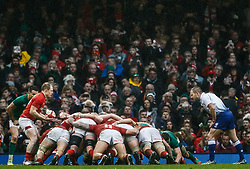 Aled Davies of Wales puts in to the scrum<br /> <br /> Photographer Simon King/Replay Images<br /> <br /> Six Nations Round 5 - Wales v Ireland - Saturday 16th March 2019 - Principality Stadium - Cardiff<br /> <br /> World Copyright © Replay Images . All rights reserved. info@replayimages.co.uk - http://replayimages.co.uk