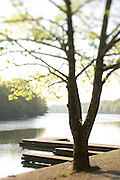 boat dock on a small neighborhood lake for fishing or boating in the morning light.