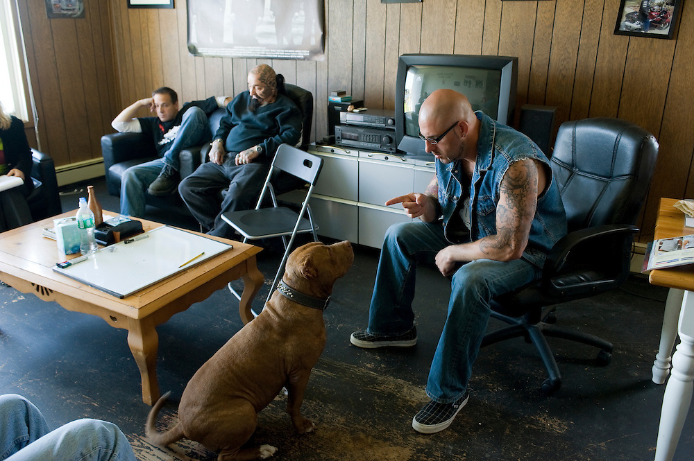 """Rescue Ink, Long Island, New York, taettowierte Motoradgang, Verein zur Rettung mishandelter Hunde und anderer Tierarten..Jonny """"O"""" und Vereinshund Rebel im Vereinshaus..Rescue Ink rettete dem Pitbull 'Rebel' das Leben, er war in Virginia als Koeder fuer Kampfhunde eingesetzt worden und erlitt schwerste Verletzungen. .Rescue Ink, the animal rescue group that brings an in your face approach to the fight against animal abuse and neglect. The goups members are heavily tattooed and ride motorbikes. Their pitbull 'Rebel', who lives at their headquarters, was rescued from a dog fighting operation, where he was used as bait. He was near death when two members of Rescue Ink flew to Virginia to save him....Foto © Stefan Falke."""