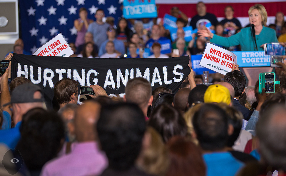 Democratic nominee for President Hillary Clinton continues to speak during a rally as animal rights activists unfurl a banner and attempt to disrupt the event at IBEW Local 357 on Thursday, August 4, 2016.