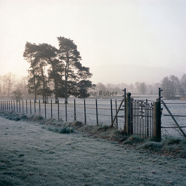 Frosted landscape with wrought iron gate and fence marking the boundary of garden. Bryan's Ground, Herefordshire.