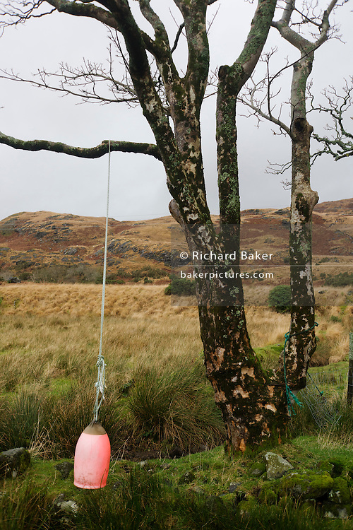 Boating buoy at Sarah Leggitt's estate cottage, a former Smithy with livestock at Lochbuie, Isle of Mull, Scotland.