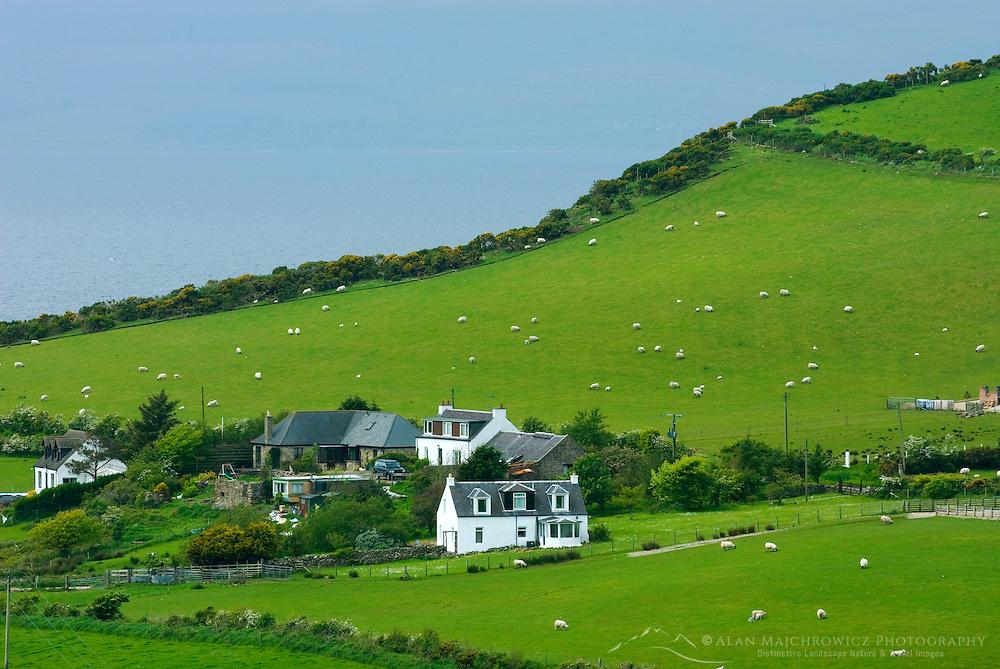 Rural scene Isle of Arran Scotland
