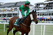 Balnaslow and jockey J O'hare head for the start of the 4.05PM The Randox Health Foxhunters' Steeple Chase (Class 2) 2m 5f during the Grand National Festival Week at Aintree, Liverpool, United Kingdom on 4 April 2019.
