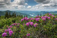 Created at BRP/ROAN on 01 Jun, 2019 by Mark VanDyke Photography.