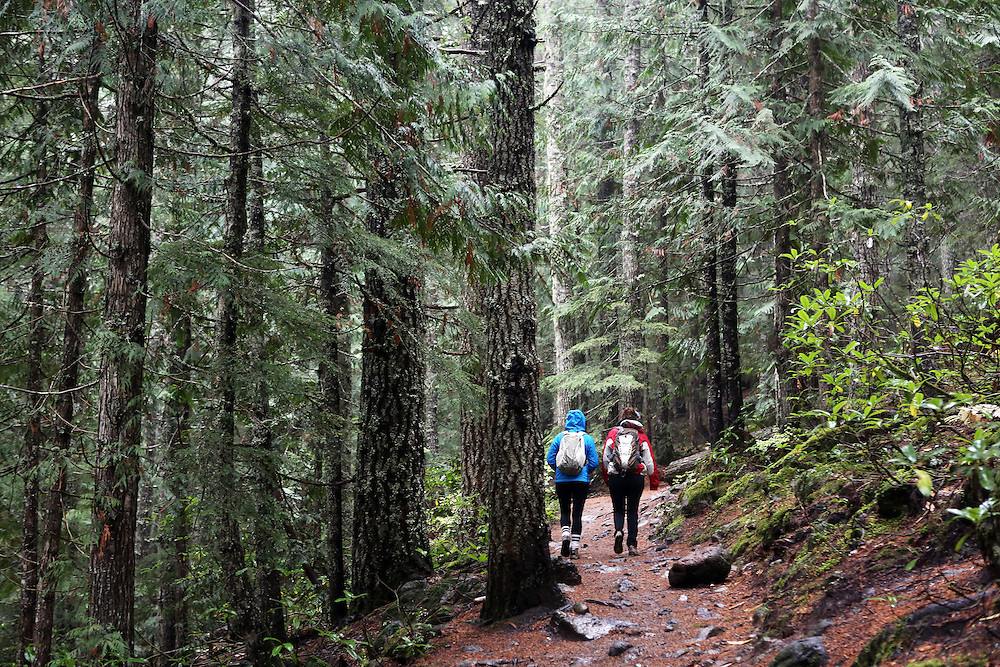 "The film adaptation of Cheryl Strayed's memoir, ""Wild,"" stars Reese Witherspoon as a troubled woman who challenges herself by hiking the Pacific Crest Trail in Oregon. The Mirror Lake Trail leads to Tom Dick and Harry Mountain, in Government Camp, Ore."