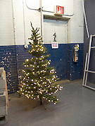 lonely Christmas tree in hall way near exit door