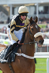 LIVERPOOL, ENGLAND - Thursday, April 8, 2010: Tidal Bay ridden by Brian Hughes during the opening day of the Grand National Festival at Aintree Racecourse. (Pic by David Rawcliffe/Propaganda)