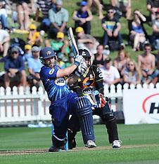 Wellington-Cricket, HRV 20/20, Firebirds v Volts, January 03